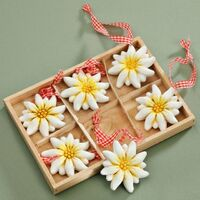 Edelweiss Flower Poly Magnet