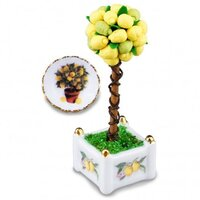 Miniature Lemon Tree Set